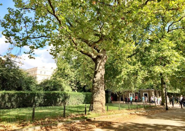 Londres: Tour guiado na Clarence House, a Residência oficial dos Princípes Charles e Harry
