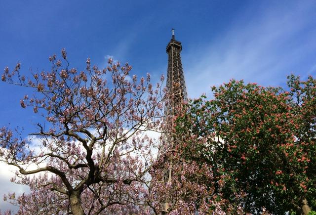 Jantando na Torre Eiffel: Restaurante 58 Tour Eiffel