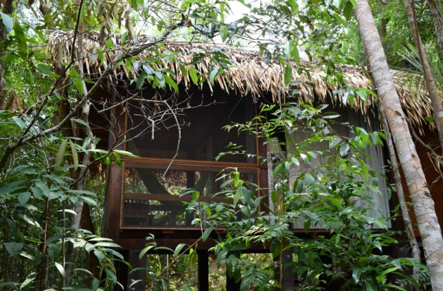 Dica de Hotel na Selva Amazônica: Anavilhanas Jungle Lodge