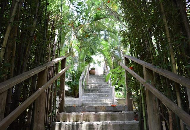 BC Escada