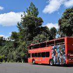 Bustour: Ônibus turístico pra conhecer todas as atrações de Gramado e Canela