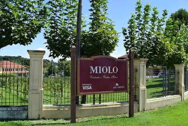 Miolo 8