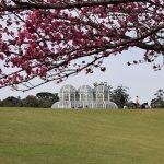 Segurança: Curitiba já não é mais a mesma!
