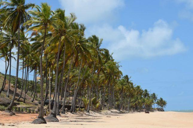 praia-de-coqueirinho
