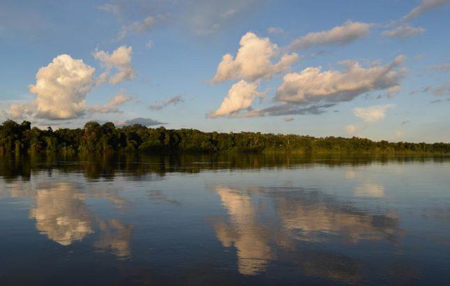 Hospedagem em Alta Floresta: Cristalino Logde, hotel localizado na Floresta Amazônica Mato-grossense