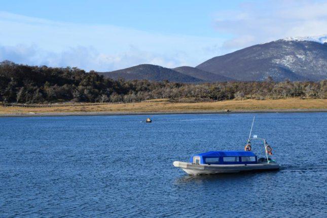 isla martillo ushuaia inverno (10)
