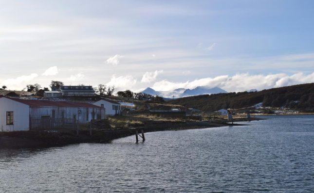 isla martillo ushuaia inverno (11)