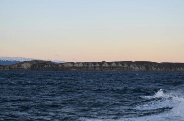 isla martillo ushuaia inverno (24)