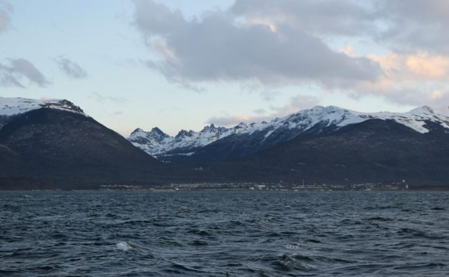 isla martillo ushuaia inverno (25)