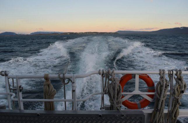 isla martillo ushuaia inverno (27)