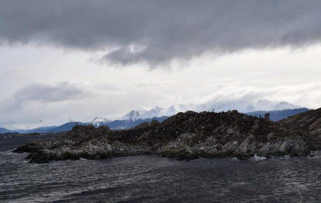 isla martillo ushuaia inverno (5)