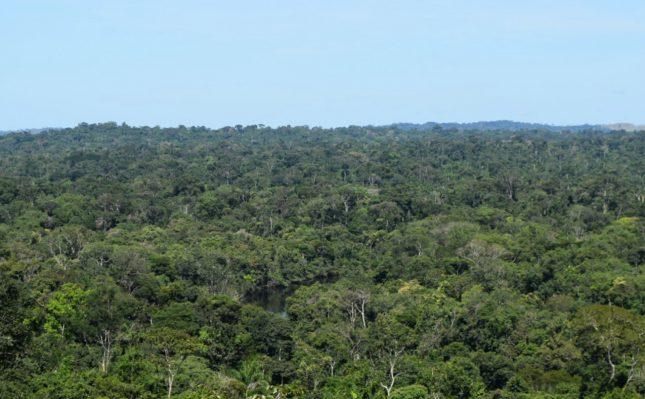 Mato Grosso: Informações práticas