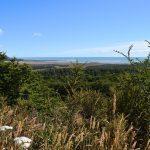 Ushuaia: Cabo San Pablo e Estância Rolito, um dia na costa do oceano Atlântico da Isla Grande de Tierra del Fuego